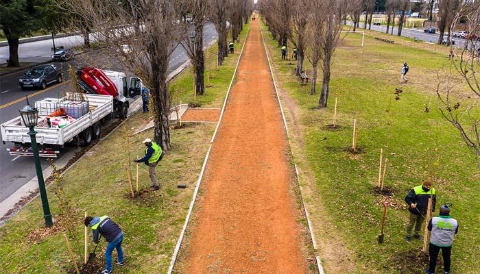 Plan de Forestación en la ciudad de Buenos Aires